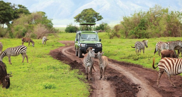 Africa_Safari-Vehicle